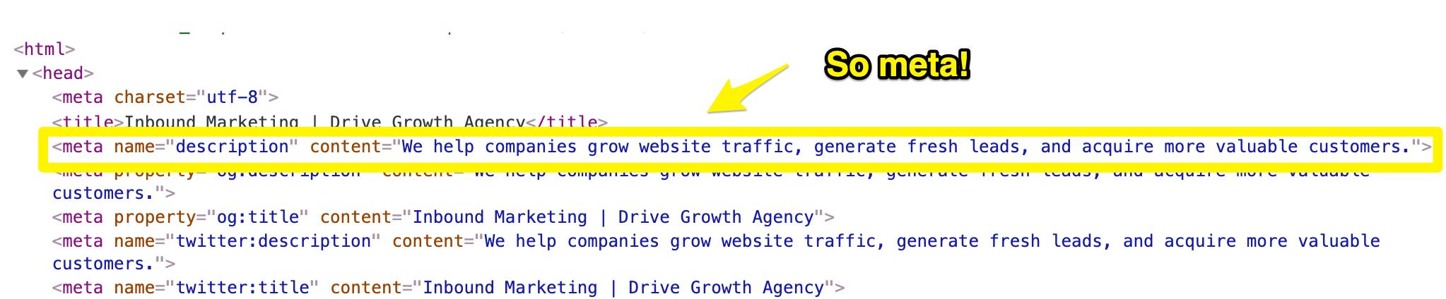 meta source code